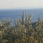 Foto Kaz Mountains