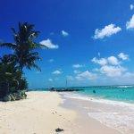 Billede af Coral Sands Beach Resort