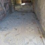 Interior mosaic at Herculaneum