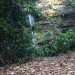 Evilson Waterfall Photo