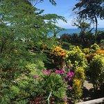 Beach garden in front of Villas Serenidad