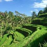 Photo of Java Adventure Trail