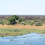 Linyanti Bush Camp- African Bush Camps resmi