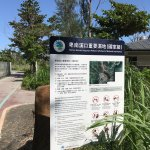 Photo of Taitung Forest Park