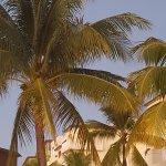 Foto de Cozumel Palace
