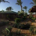 Photo de Abu Dabbab Lodge