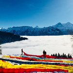 Foto de Paragliding Interlaken