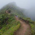 Photo of Waihee Ridge Trail