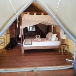 Our Tent/Room