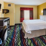King Room with Handicapped Accessible Bathroom PNK1