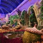 Photo de Conservatory & Botanical Gardens at Bellagio