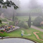 Photo of Amantikir Park