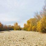 Foto de Boise River Greenbelt