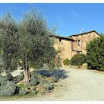 Agriturismo Marciano Foto