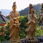 Ten Thousand Buddhas Monastery (Man Fat Sze) resmi