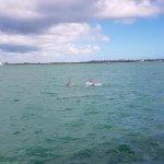 Photo of Fury Water Adventures Key West