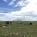 صورة فوتوغرافية لـ Enchoro Wildlife Camp