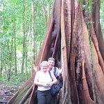 Tour to Corcovado wilderness  Park