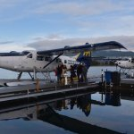 Photo of Harbour Air Seaplanes