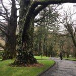 Kylemore Abbey & Victorian Walled Garden Foto