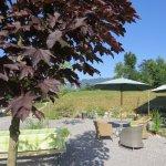 Photo de Lipizzaner Lodge Relaxtivity Guest House