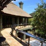 Photo de Shamwari Game Reserve Lodges