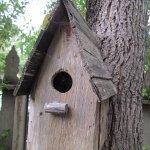 Photo de Cambria Pines Lodge
