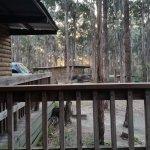 Lakes Entrance Log Cabins Φωτογραφία