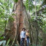 De heilige Mapajo tree van de community Asunción del Quiquibey.