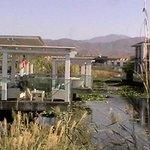 natural lagoon and bar area