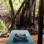 Foto de Malolo Island Resort
