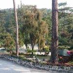 Bild från Safari Lodge