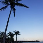 Photo de Akumal Beach