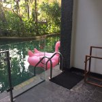 Ask not why the flamingo float is there. Ask why you are not on it.