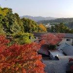 Mountain view with autumn trees