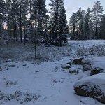 Photo of Lapland Safaris - Rovaniemi