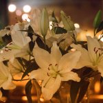 Beautiful lilies on the large wooden table, as the sun went down.