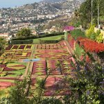 top of botanical gardens overlooking Funchal