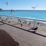 Photo de Promenade des Anglais