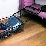 Cage box to keep safe your properties