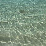 Sun Island Beach Foto