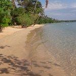 Monkey Island Resort Foto