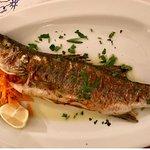 Naoussa Restaurant Foto