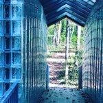 The glass bridge