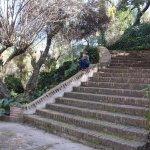 Escalinatas internas en los alrededores del parque