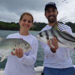 Another double hook up on jack crevalle and a roosterfish