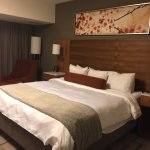 Radisson Hotel & Conference Centre Calgary Airport Foto