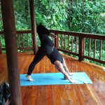 Yoga Pavillion - Classes are offered