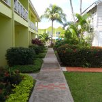 Φωτογραφία: Bay Gardens Hotel