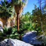 Foto de Indian Canyons